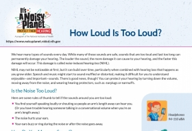 How loud is too loud? fact sheet