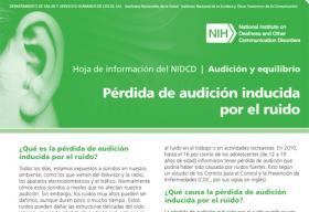 Pérdida de la audición inducida por el ruido (Noise-Induced Hearing Loss)