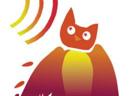 The WISE EARS owl logo